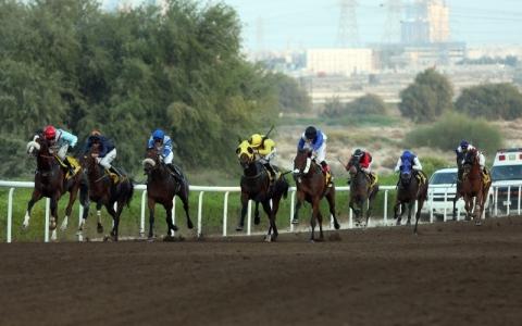 الصورة: الصورة: مضمار جبل علي يستضيف سباق العوير الجمعة