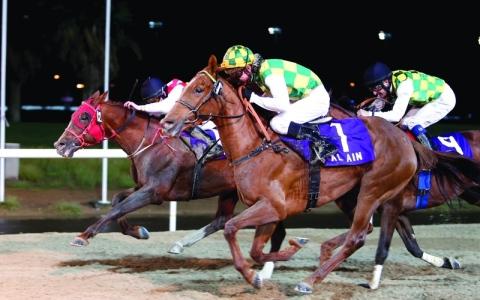 الصورة: الصورة: 105 خيول تتسابق في أول سباقات المضمار العيناوي الليلة