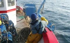 الصورة: الصورة: مصرع وفقدان 16 شخصاً في غرق قارب بالمغرب