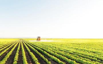 الصورة: الصورة: الإمارات تتقدم 10 مراكز في مؤشر  الأمن الغذائي العالمي وصولاً للمرتبة 21