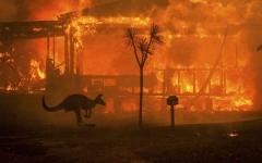 الصورة: الصورة: أستراليا تأمر السياح بمغادرة ساحلها الجنوبي تحسباً لاستعار الحرائق غداً