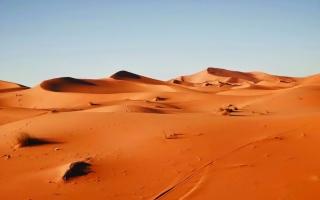 الصورة: الصورة: «في قلب الصحراء» سيرة الرجل الأحمر