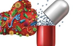 الصورة: الصورة: الأمراض المقاومة للأدوية.. تناول المضادات الحيوية عشوائياً يضعف مناعة الجسم