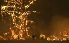 الصورة: الصورة: أستراليا تدعو ربع مليون شخص إلى ترك منازلهم خوفاً من الحرائق