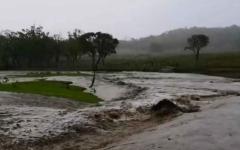 الصورة: الصورة: (فيديو) أستراليا.. من لهيب الحرائق إلى خطر الفيضانات