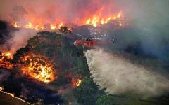 الصورة: الصورة: حرائق الغابات تكبد السياحة الأسترالية خسائر فادحة