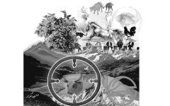 الصورة: الصورة: صفقة تحويلية من أجل الطبيعة