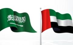 الصورة: الصورة: الإمارات والسعودية تدينان هجوم بوركينافاسو