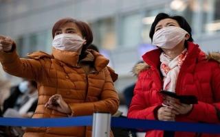 الصورة: الصورة: الصين تنشر أول صورة لفيروس كورونا القاتل