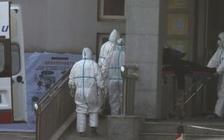 الصورة: الصورة: هيئة الوقاية الأوروبية لاتستبعد ظهور حالات إصابة جديدة بفيروس كورونا