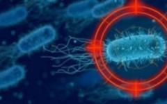 الصورة: الصورة: حقائق جديدة صادمة عن فيروس كورونا القاتل