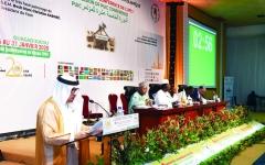 الصورة: الصورة: الإمارات تدين التدخل في شؤون الدول الإسلامية