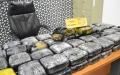 """الصورة: الصورة: """"جمارك أبوظبي"""" تحبط محاولة تهريب 40 كغم من الماريجوانا في أكياس بلاستيكية"""