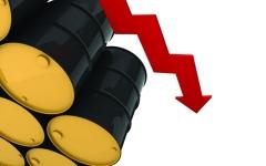 الصورة: الصورة: أسعار النفط تنخفض بنسبة 1 %