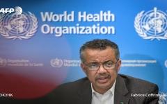 """الصورة: الصورة: بالفيديو.. """"الصحة العالمية"""" تسمي كورونا المتجدّد """"كوفيد-19"""""""