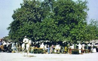 الصورة: الصورة: وثيقة بريطانية تصف العيد في الإمارات قديماً