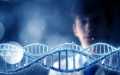 الصورة: الصورة: الأمراض الوراثية  آلام وتكاليف تفاقمها ندرة الكادر الطبي