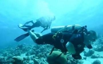 الصورة: الصورة: شاهد.. ملك الأردن وولي عهده يغطسان لتنظيف مياه البحر