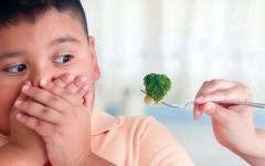 الصورة: الصورة: سمنة الأطفال..  تحديات مجتمعية للتصدي لأمراض المستقبل