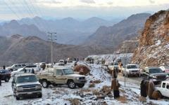 """الصورة: الصورة: الثلوج تكسو """"اللوز"""" في السعودية"""