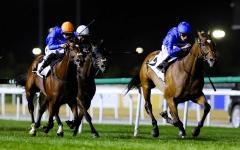 الصورة: الصورة: رباعية لخيول جودلفين في تاسع سباقات كرنفال كأس دبي العالمي