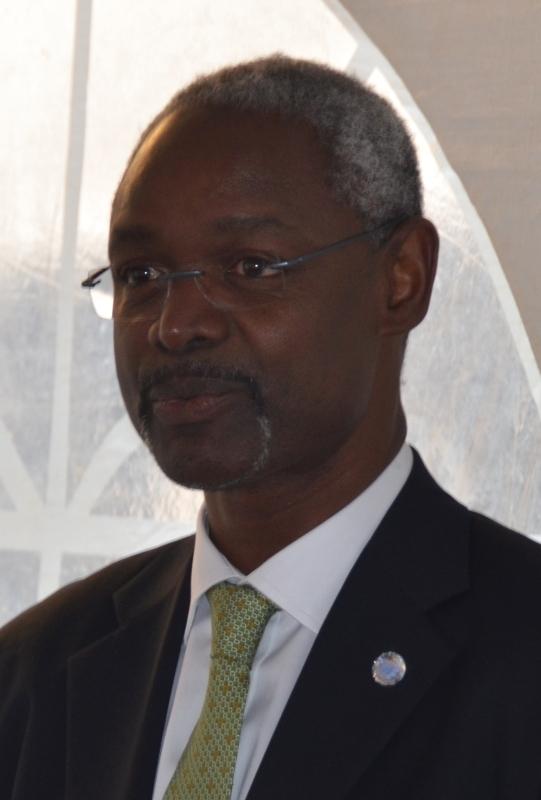الصورة : إبراهيم ثياو - وكيل الأمين العام للأمم المتحدة والسكرتير التنفيذي لاتفاقية الأمم المتحدة لمكافحة التصحر.