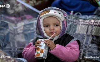 الصورة: الصورة: البراءة السورية تتقطع بها السبل