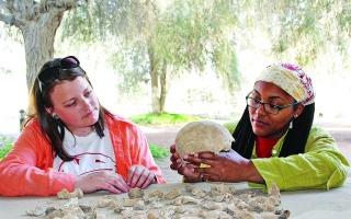 الصورة: الصورة: رأس الخيمة تبني تصوراً عن حضاراتها القديمة بدراسة عظام بشرية أثرية