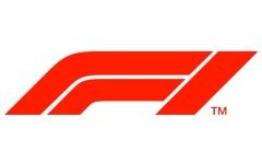 الصورة: الصورة: سباقات افتراضية  في فورمولا 1