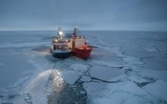 الصورة: الصورة: 100 عالم محاصر في سفينة بالقطب الشمالي بسبب كورونا