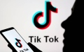 """الصورة: الصورة: """"تيك توك"""" في زمن كورونا.. منصة فعالة للتثقيف والتوعية"""