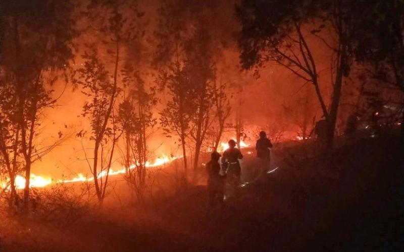 الصورة: الصورة: مقتل 19 شخصا جراء حريق غابات في الصين