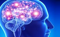 الصورة: الصورة: علماء يكشفون أعراضا جديدة لكورونا في الدماغ