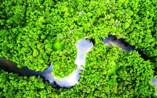 الصورة: الصورة: تخلّى عن وظيفته ليزرع غابة في الإكوادور