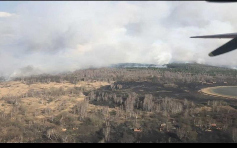"""الصورة: الصورة: اشتعال النيران في غابة قرب محطة """"تشيرنوبل 1"""" النووية بأوكرانيا"""