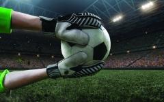 الصورة: الصورة: «حماة العرين»..  «مظاليم»  عبر تاريخ الكرة الإماراتية