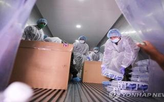 الصورة: الصورة: 8 وفيات و53 إصابة جديدة بكورونا في كوريا الجنوبية