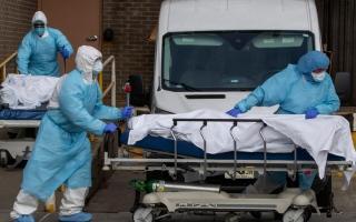 الصورة: الصورة: فيروس كورونا يودي بحياة 100 طبيب في إيطاليا