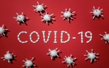 الصورة: الصورة: ماذا نعرف عن التعافي من فيروس كورنا ؟