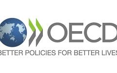 الصورة: الصورة: منظمة التعاون الاقتصادي: تدابير الإمارات سريعة وحاسمة ومبتكرة ومبدعة