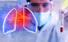 الصورة: الصورة: الخلايا الجذعية باب أمل جديد لعلاج «كوفيد 19»