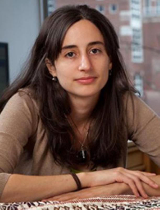 الصورة : ريما ن. حنا - أستاذة دراسات جنوب شرق آسيا في كلية هارفارد كينيدي، ومديرة كلية أدلة هارفارد لتصميم السياسات