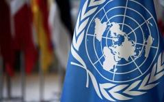 الصورة: الصورة: الأمم المتحدة تحذر: الجميع معرض لخطر الاستبعاد من السفر