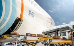 """الصورة: الصورة: """"فلاي دبي"""" تنقل أكثر من 12 ألف مسافر في 90 رحلة عودة للوطن"""