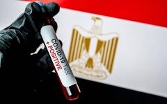 الصورة: الصورة: تسجيل 338 إصابة جديدة بفيروس كورونا في مصر