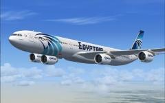 """الصورة: الصورة: """"مصر للطيران"""" تنظم رحلات عودة للمصريين من الإمارات"""