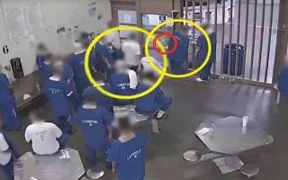 الصورة: الصورة: شاهد.. سجناء ينقلون كورونا لبعضهم بعضاً