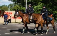 """الصورة: الصورة: لا وفيات جديدة بكورونا في ألمانيا والدنمارك تسرّع """"الفتح"""""""