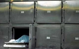 الصورة: الصورة: تعود للحياة بعد 18 ساعة في ثلاجة الموتى