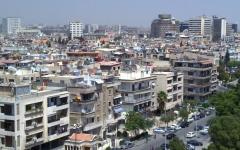 الصورة: الصورة: تزامناً مع «كورونا».. الحشرات تغزو دمشق